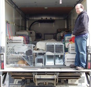 Pets Alive Van